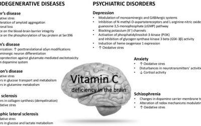 Does Vitamin C Influence Neurodegenerative Diseases and Psychiatric Disorders?